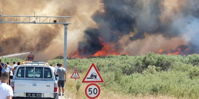 Edremit sahilinde yangın