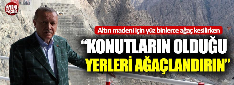 """Cumhurbaşkanı Erdoğan: """"Her taraf yemyeşil olmalı"""""""