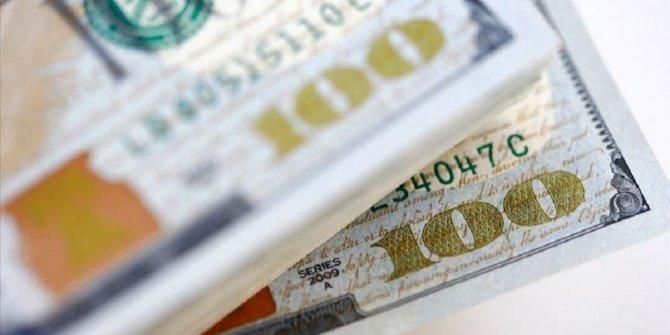 Dolar yerine kripto para önerisi