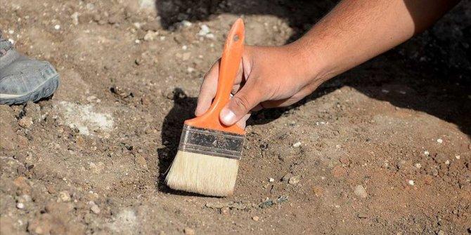 Kayseri'de 7,5 milyon yıllık mamut fosili bulundu