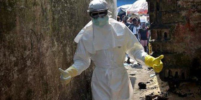 Nijerya'da sarı humma salgını