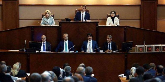 İBB Meclisi'nden 2 ayrı Barış Pınarı deklerasyonu