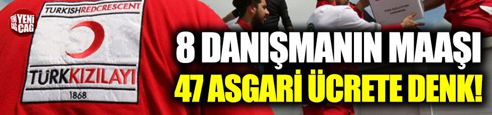 Kızılay'da 8 danışmana ödenen maaş 47 asgari ücrete denk!