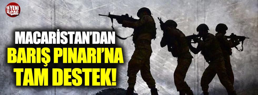 Macaristan'dan Barış Pınarı'na tam destek