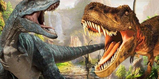 Taylan'da yeni bir dinozor türü bulundu