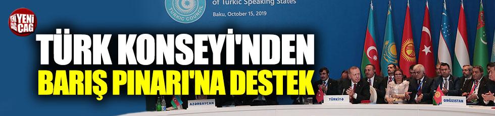 Türk Konseyi'nden Barış Pınarı'na destek