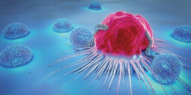 Kanserli hücreleri 'GPS Gibi' tespit edebilen yeni sistem geliştirildi