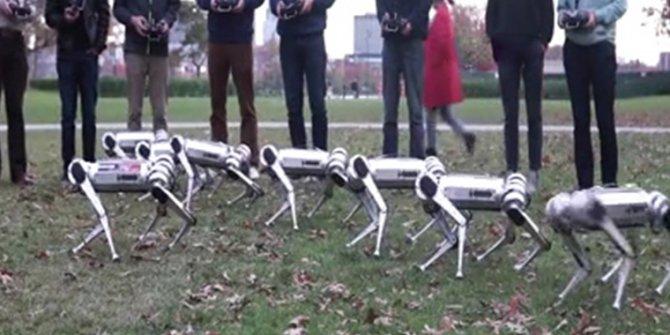 Robotlar futbol oynadı!