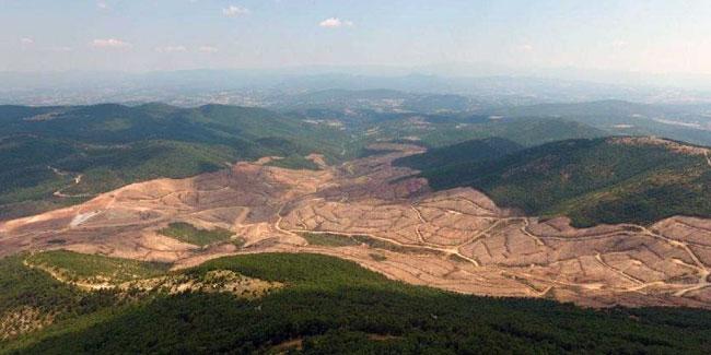 Kaz Dağları'nı katleden şirket sosyal medyada alay konusu oldu