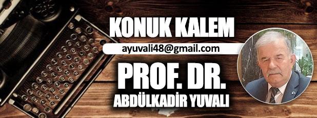 Ermeni meselesinde Türkiye gömlek düğmesini yanlış mı ilikledi? / Prof. Dr. Abdülkadir Yuvalı