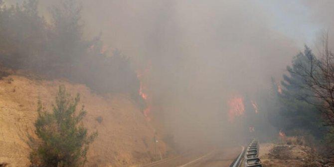 Osmaniye'de korkutan orman yangını!