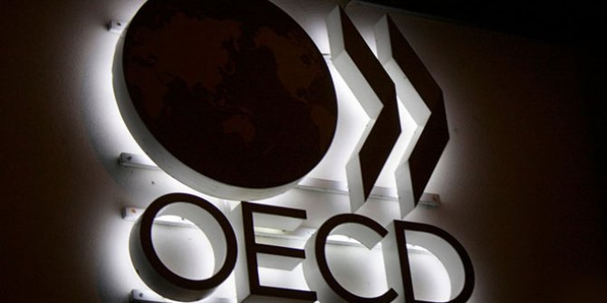 OECD'den Türkiye açıklaması