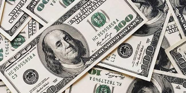 Dolar kaç seviyesini gördü?