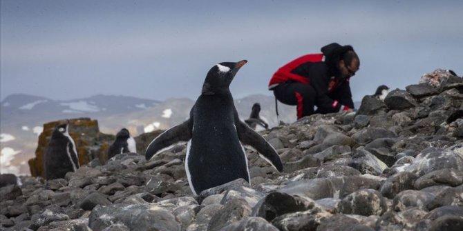 10 bin yıl önce yaşanan buzul erimeleri incelendi