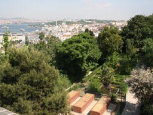 Türkiye'nin ilk botanik bahçesi yok ediliyor