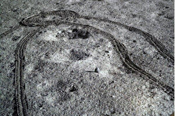 ay-3294.jpg