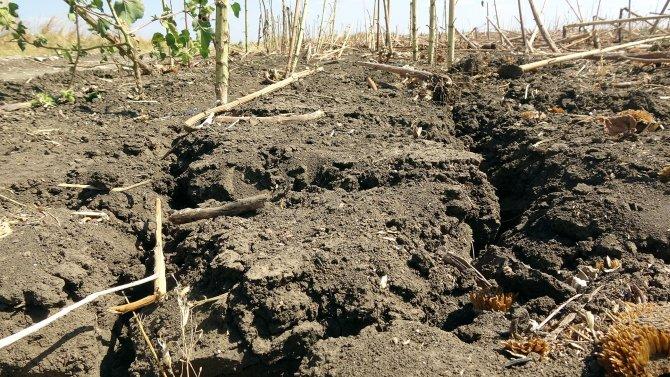 edirnede-kuraklik-topraklari-catlatti-ciftci-ekim-yapamiyor-3946-dhaphoto1-1.jpg