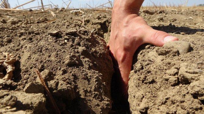 edirnede-kuraklik-topraklari-catlatti-ciftci-ekim-yapamiyor-3946-dhaphoto2.jpg