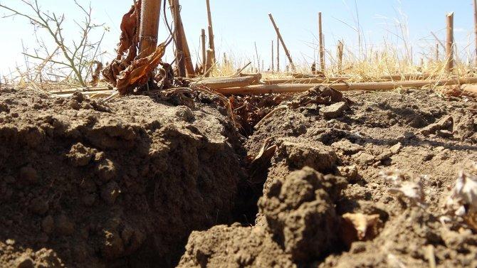 edirnede-kuraklik-topraklari-catlatti-ciftci-ekim-yapamiyor-5244-dhaphoto11.jpg