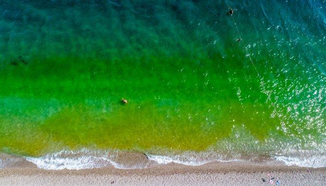 fitoplanktonlar-denizi-yesile-dondurdu-tatilciler-korktu-1427-dhaphoto1.jpg