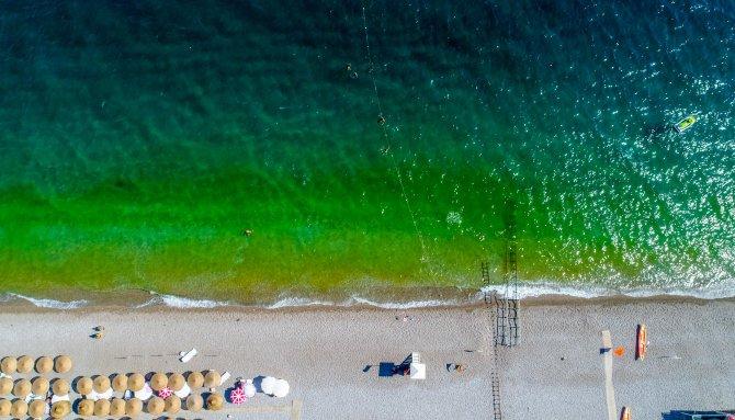 fitoplanktonlar-denizi-yesile-dondurdu-tatilciler-korktu-1427-dhaphoto3.jpg