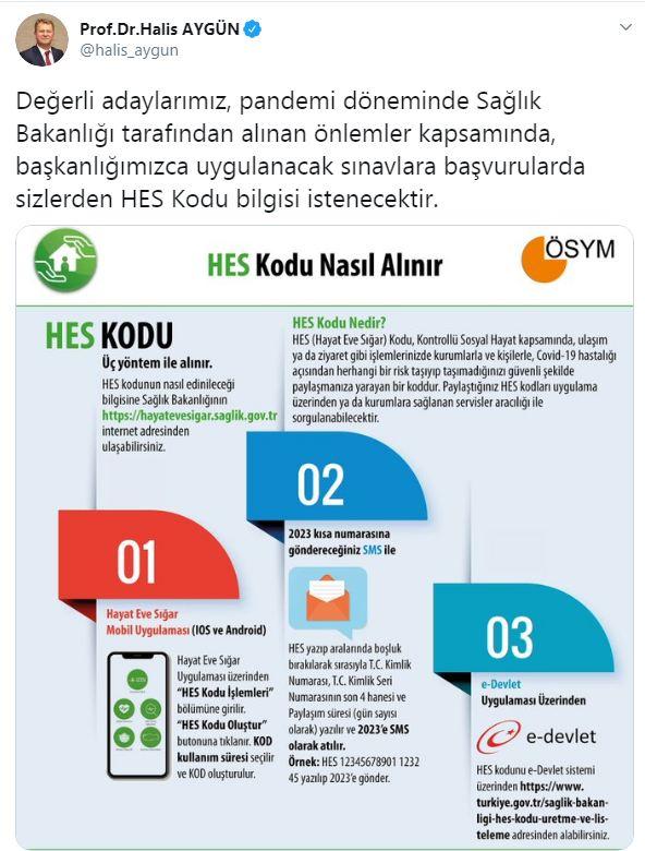 halis1-002.jpg