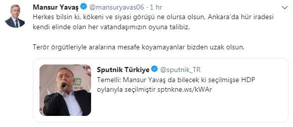 mansur-006.jpg