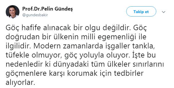 pelin-gundes.png