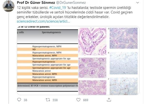 prof-dr-guner-sonmez-001.jpg
