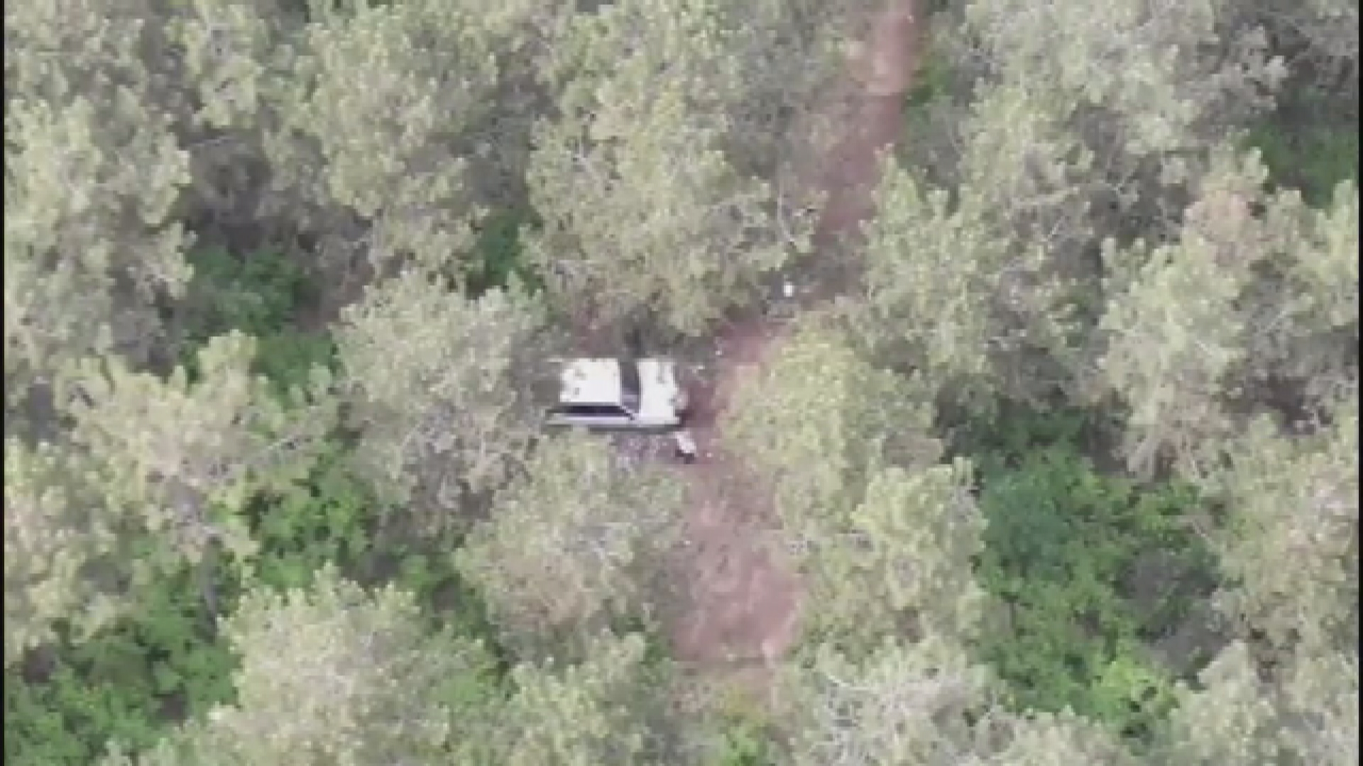 sultanbeylide-ormanda-piknik-yapan-2-kisi-drone-ile-tespit-edildi-1950-dhaphoto3.jpg