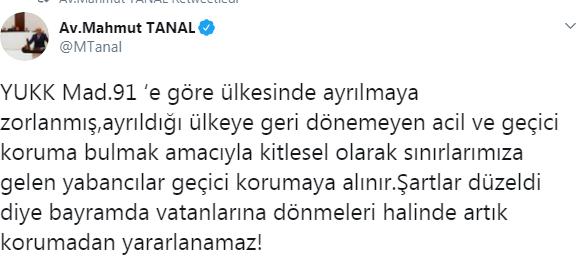 tanal2.png