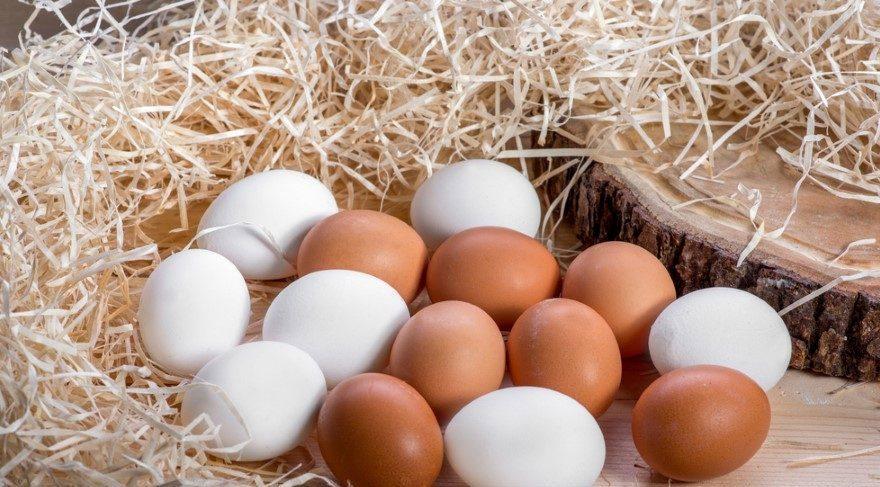 yumurta-sari.jpg