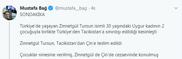 zinnetgul1.png